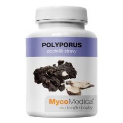 MycoMedica Polyporus 90 ks