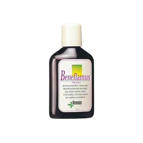 Hemann Beneflamus bohemikus 300 ml