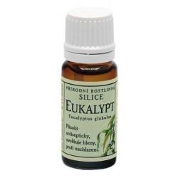 Eukalypt přírodní silice
